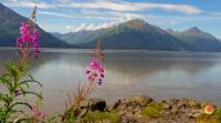 Alaska What I miss What I don't Miss