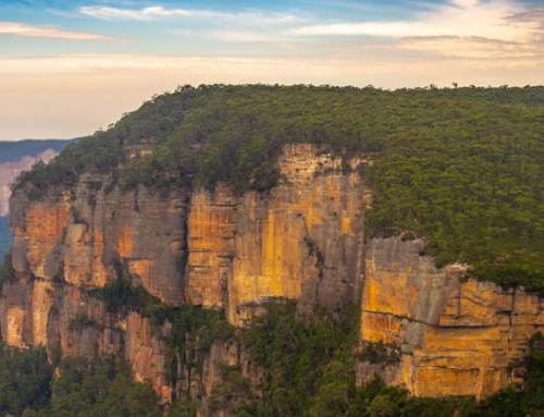 Unique Things to do in the Blue Mountains: Itinerary with Local Tips