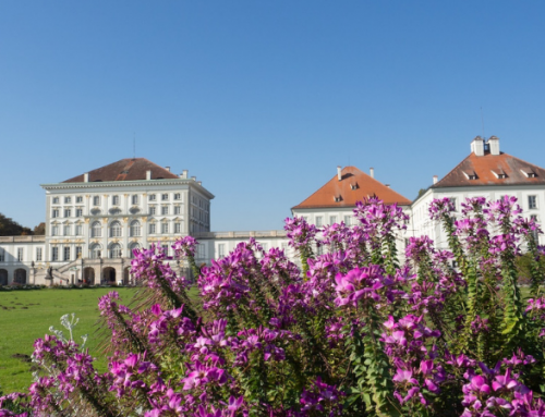 Summer in Munich: 40 Local Things to do to Beat the Heat